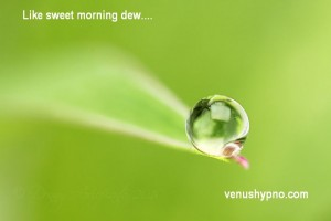 morningdew30